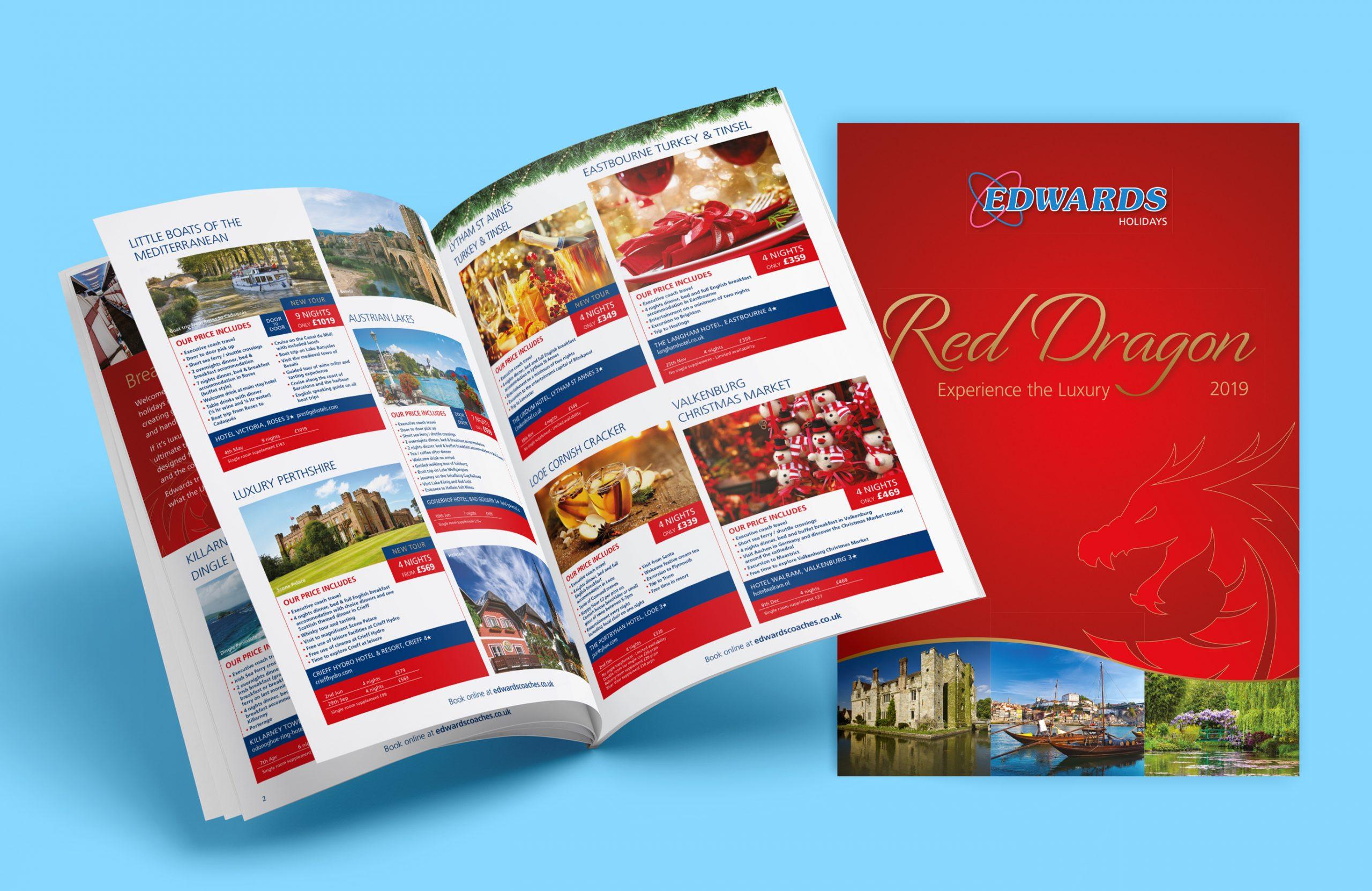 Red Dragon Brochure Design